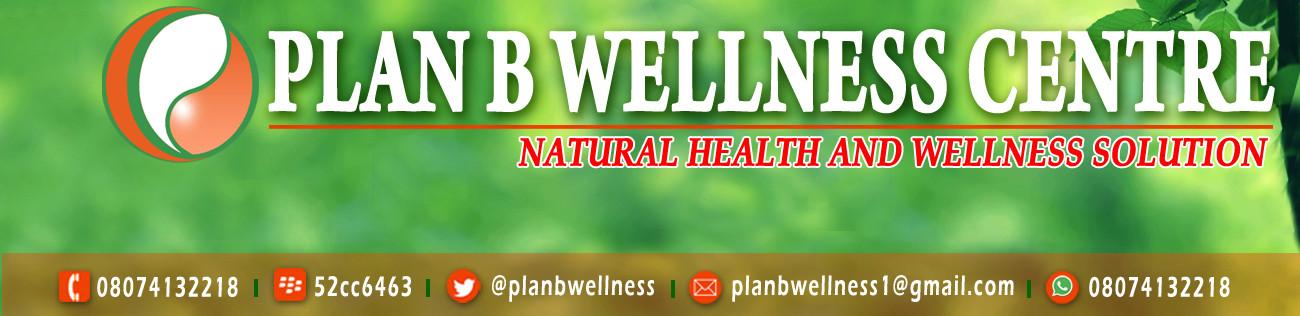 PlanBWellness.Com