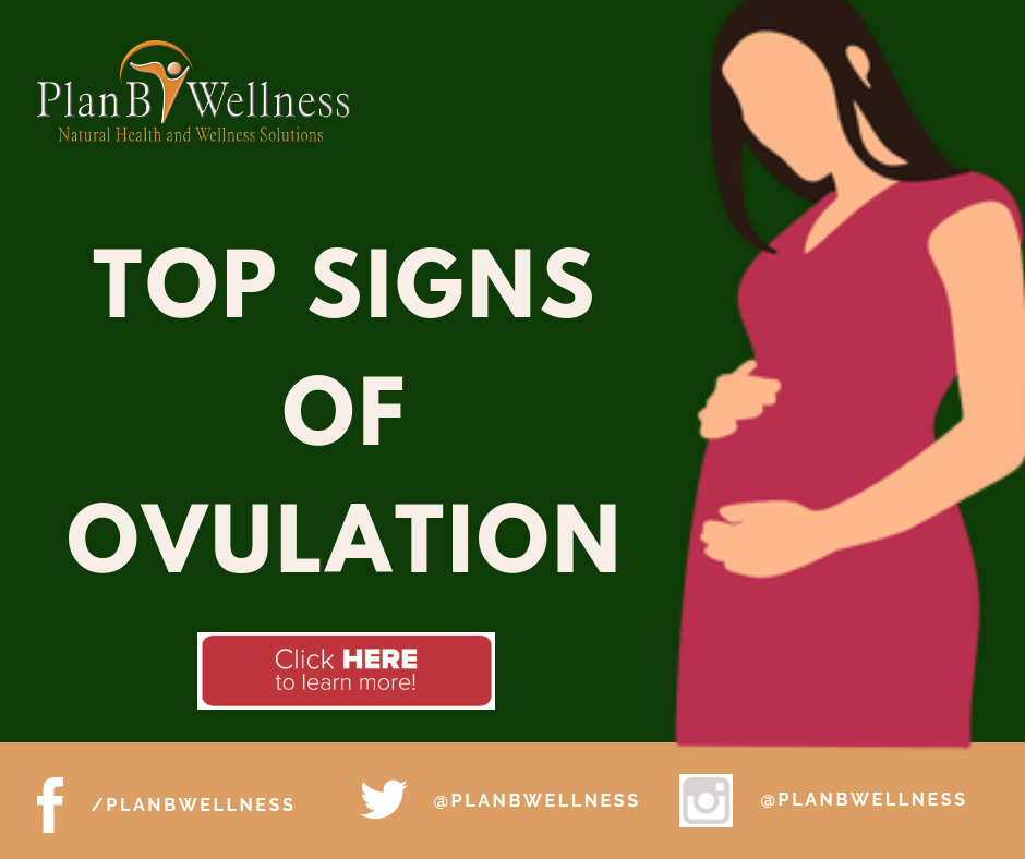 SIGNS OF OVULATION AND THE SECRETS OF FERTILITY CHARTING