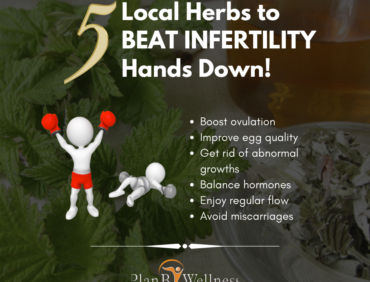 5 Local Herbs to Beat Infertility Hands Down