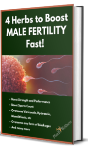 4 Herbs to Boost MALE FERTILITY Fast!- 3D cover